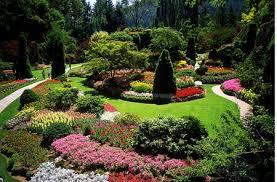 garden with landscape design principles