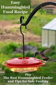 homemade hummingbird food recipe and