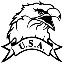 Usa American Patriotic Eagle Window Decal Sticker Car Truck Vinyl Funny For Sale
