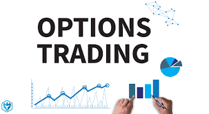 Investment And Options Trading Facts