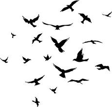 Birds Wall Decor