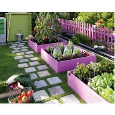 raised garden bed for beginners