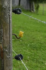 How To Make An Electric Fence Step By Step New Life On A Homestead Homesteading Blog