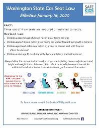 new seat belt laws effective jan 2020