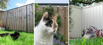 Cat Containment Systems Home Facebook