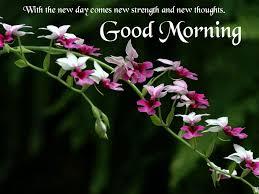 صور عن الصباح احلي صور صباح الخير Good Morning ميكساتك