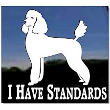 Amazon Com I Have Standards Standard Poodle Vinyl Window Decal Dog Sticker Kitchen Dining