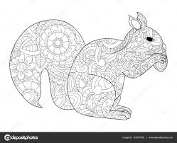 Squirrel With Nut Coloring Vector For Adults Stock Vector