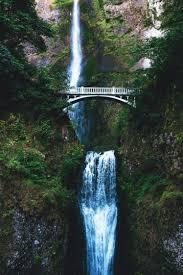 nature water bridge trees waterfall