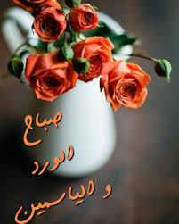 صباحكم ورد وفل وياسمين نتمني لكم جميعا يوم مشرق ومليئ باﻷخبار