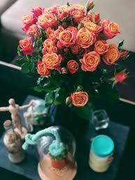 زهور عيد ميلاد باقات ورد روعة قبلات الحياة