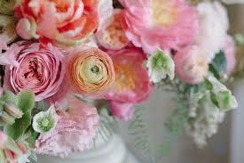 les fleurs andover flowers plants