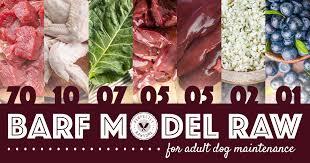 biologically appropriate raw food barf