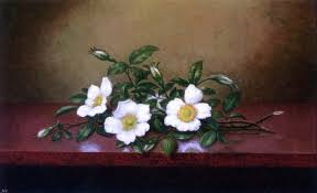 Martin Johnson Heade Cherokee Roses On A Shiney Table Wall Decal Contemporary Wall Decals By Art Megamart