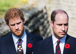 Prince Harry and Prince William Respond to Claims That Their Charities  Mishandled Funds | Vanity Fair