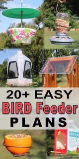 easy diy homemade bird feeder plans for