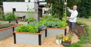 raised garden bed kit non toxic