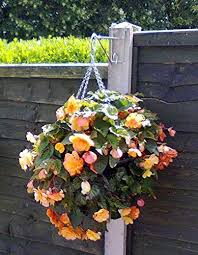 3 X Hanging Basket Brackets For Concrete Fence Posts Amazon Co Uk Garden Outdoors
