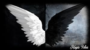 angel wing wallpaper 694pk24 picserio