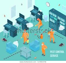 People Pest Control Service Doing Disinfection Stock Vector (Royalty Free)  1179653746