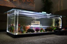 10 diy aquarium fish tank coffee table