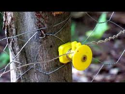 Solar Powered Electric Fence For Your Garden To Keep The Critters Out Youtube
