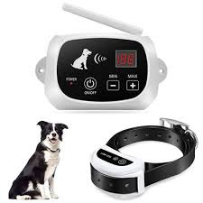 Top 10 Best Wireless Dog Fences In 2020 Reviews