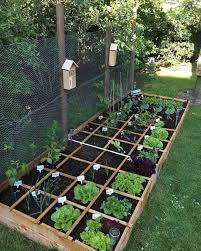 99 unusual vegetable garden ideas for