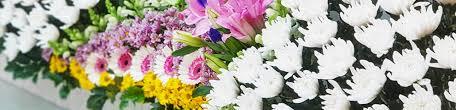 누가병원장례식장 - 꽃집