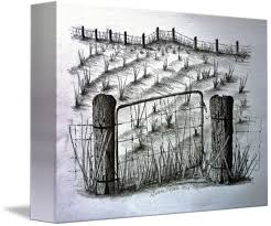 Old Farm Field And Gate By Diane Palmer