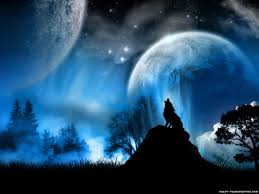 47 fire and ice wolf wallpaper on