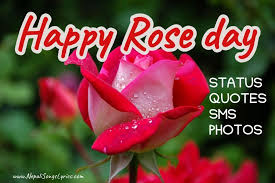 happy rose day 🌹 quotes gifts ideas for her him