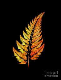 Golden Fractal Fern Digital Art by Graham Prentice