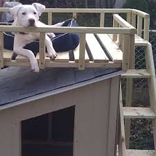 How To Build A Dog House The Home Depot