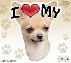 48 Each I Love My Chihuahua Dog 4 Car Home Sticker Decal Pet Gift Ebay