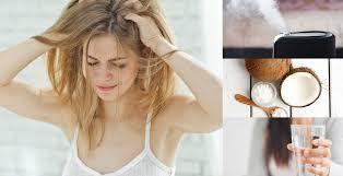 seborrheic dermais causes 7
