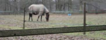 Fieldguard Electric Fencing For Horses Fieldguard Limited