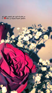 كلام عن الورد قصير 30 رسالة وخاطرة وعبارة مكتوبة في حب الورود