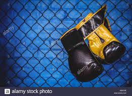 Pair Of Boxing Gloves Hanging On Wire Mesh Fence Stock Photo Alamy