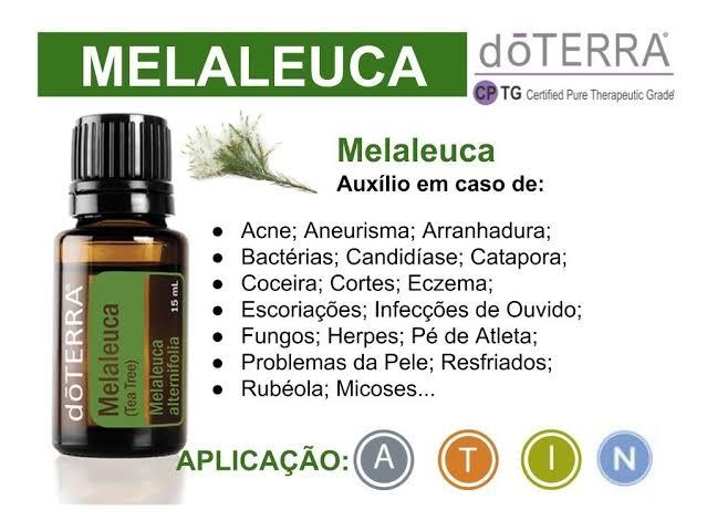 """Resultado de imagem para MELALEUCA DO TERRA 10 ML"""""""