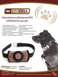 Fido S First Cell Phone Wired