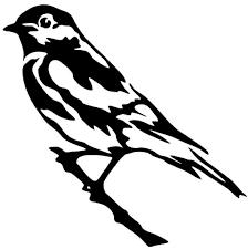 Bird On A Branch Vinyl Decal Sticker Car Window Wall Bumper Raven Jay Black Dope For Sale Online