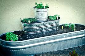 how to build a raised herb garden out