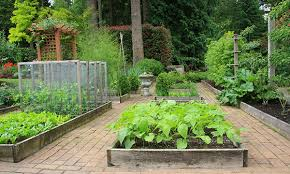 ultimate guide to raised bed gardening
