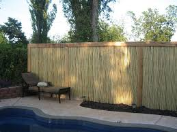 Bamboo Grove Photo Bamboo Fence