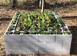 concrete block garden bonnie plants