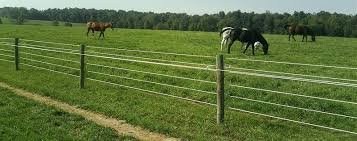 Wire Fencing High Tensile Fence Woven Wire Fence