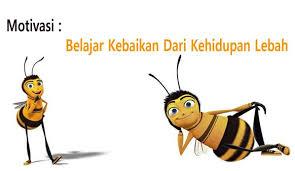 motivasi belajar kebaikan dari kehidupan lebah