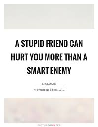 a stupid friend can hurt you more than a smart enemy picture quotes