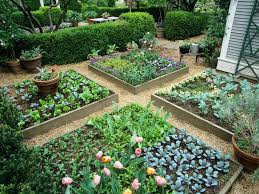 side yard landscape patio flower bed
